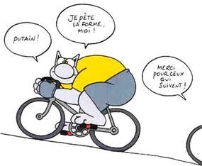 Le chat à vélo !