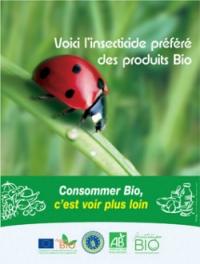 La coccinelle est mon insecticide bio !