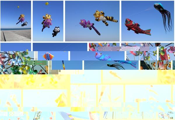 festival-international-cerf-volant-dieppe-2012