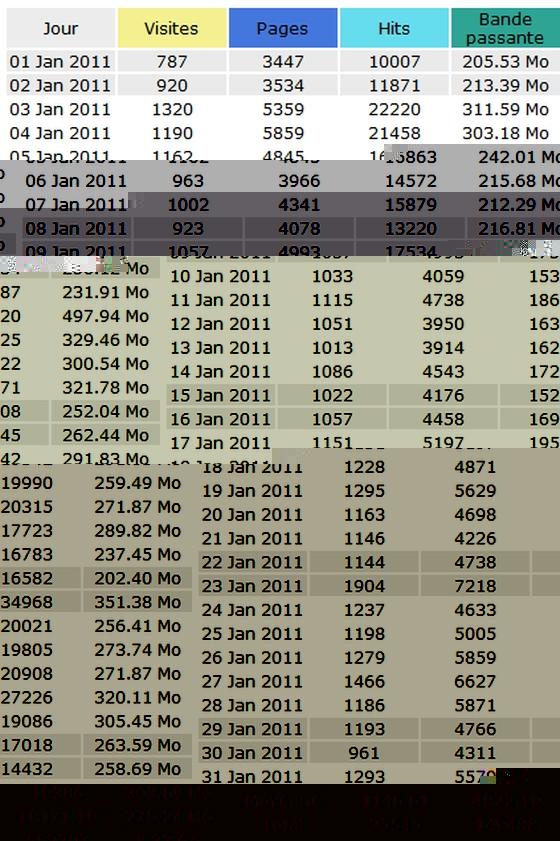 Statistiques Voie Militante - Janvier 2011